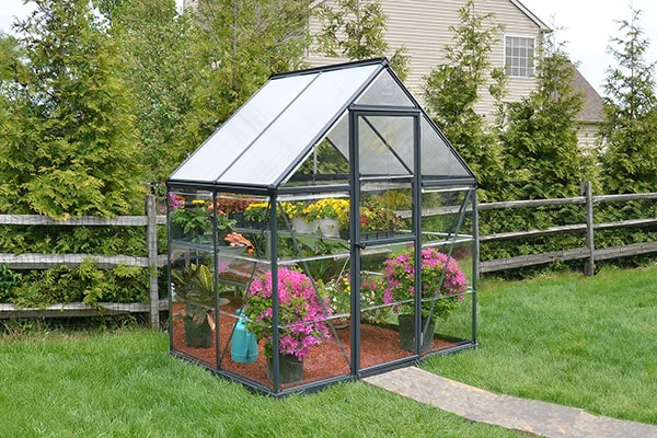 a small, grey greenhouse full of plants