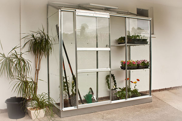 a 6x2 silver-framed lean-to greenhouse containing plants