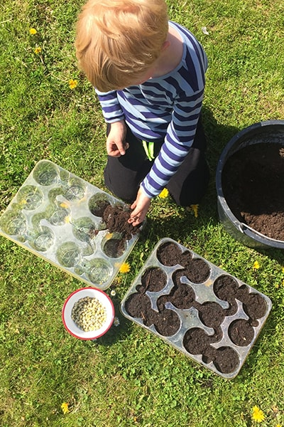 Projects to Get Children into Gardening