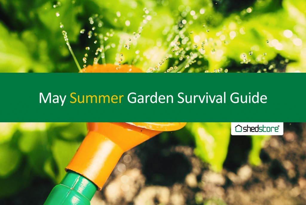 Spring Garden Guide: May Tasks