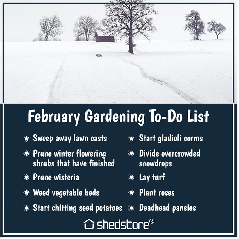 The Shedstore Blog's Gardening To Do List - February