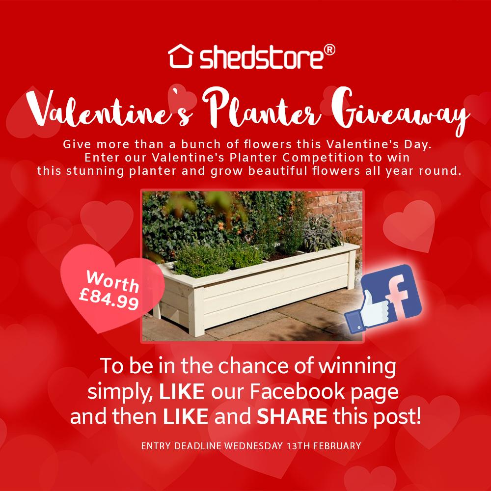 Valentine's Planter Giveaway