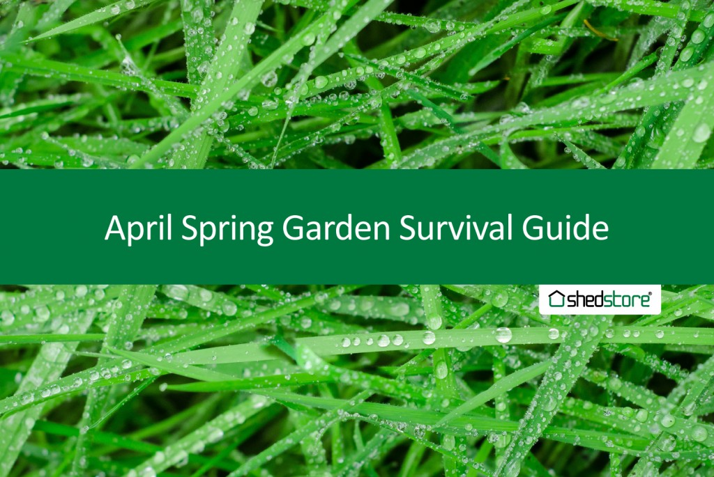 Spring Garden Guide: April Tasks