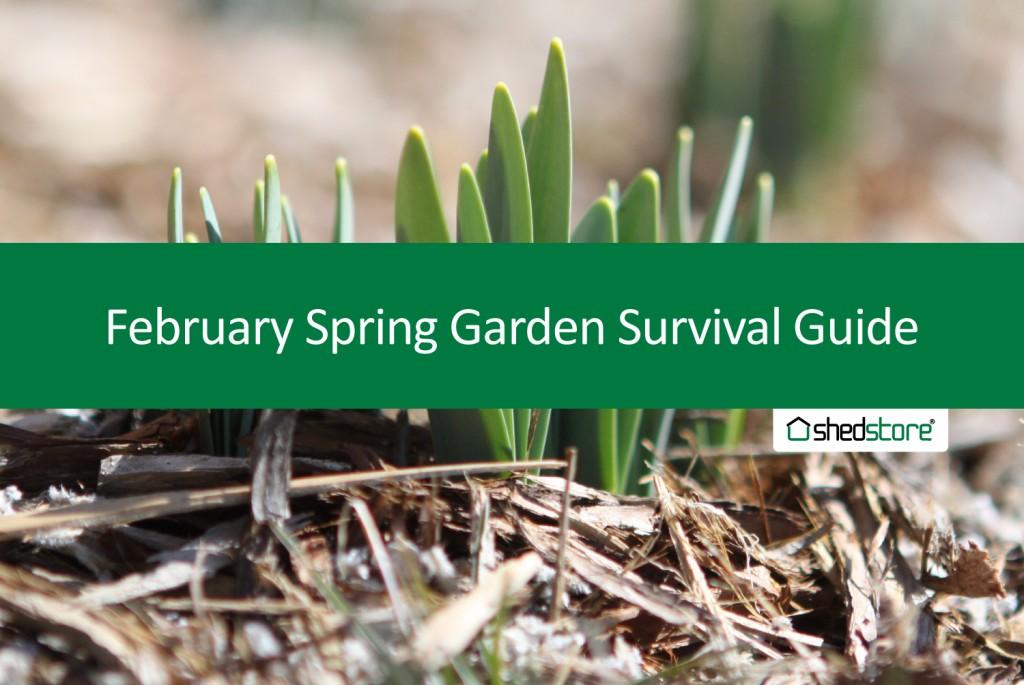 Spring Garden Guide: February Tasks