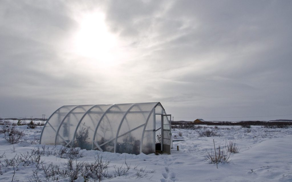 Prepare Your Greenhouse for Winter